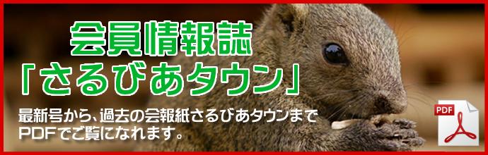 kaiho_top